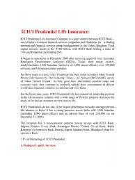 Marketing Advisor Project Reports On Marketing Mix Icici Prudential Life Insurance