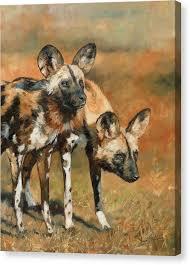 safari ltd african wild dog african wild dog canvas prints fine art america