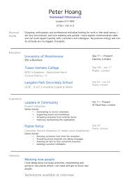 Resume Job Experience Examples by Cv Examples No Work Experience