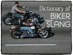 boxer dog on motorcycle biker slang motorcycle lingo axleaddict
