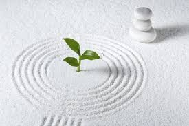 how to create a mini zen garden to experience more calm in your life
