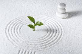 Mini Rock Garden How To Create A Mini Zen Garden To Experience More Calm In Your
