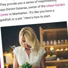 How To Start A Rock Garden by Urban Garden Center Nyc U0027s Largest Garden Center