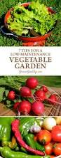 Growing Your Own Vegetable Garden by 249 Best Growagoodlife Com Images On Pinterest Canning Herb