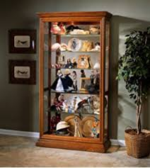What To Put In A Curio Cabinet Amazon Com Howard Miller 680 237 Parkview Curio Cabinet By
