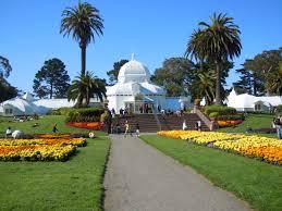 San Francisco Flower Garden by Sunset San Francisco Travel
