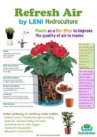 fleur hong kong florist 花香港fleur hk 部落格 all about house plants