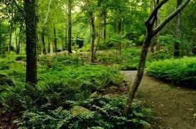 Botanical Gardens In Birmingham Al Birmingham Botanical Gardens Alabama Birding Trails