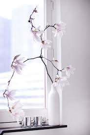 single stem vases 48 best single stem elegance images on pinterest flowers home