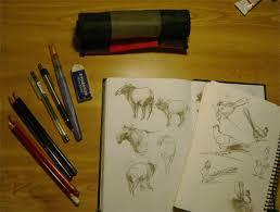 emg zine sketching in the field