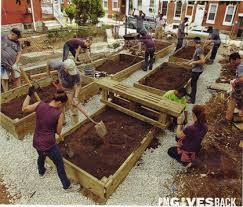Wood For Raised Vegetable Garden by Safely Using Pressure Treated Wood For Garden Frames