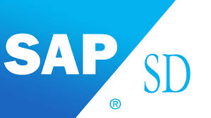 best sap sd training in chennai sap sd training institute in chennai