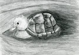 turtle duck pencil drawing black and white print hybrid animals