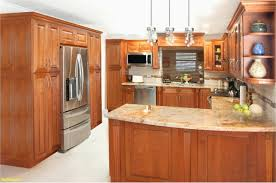 solid wood kitchen cabinets home depot simple kitchen cabinets home depot lovely modern house ideas and