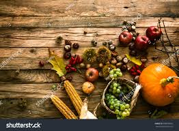 autumn fruit background autumn thanksgiving seasonal stock photo