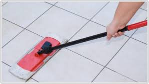best floor tile cleaner products tiles home decorating ideas