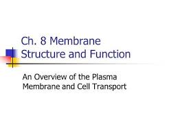 review for cell membrane structure u0026 molecular movement quiz