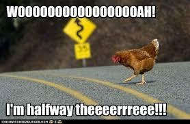 Chicken Meme Jokes - why did the chicken cross the road bon jovi animal capshunz
