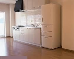 kitchen design extraordinary fascinating modern simple kitchen