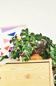ikea hack diy bowl planter