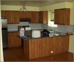 Kitchen Designs Kerala Appealing Marine Plywood Kitchen Cabinets 118 Marine Plywood