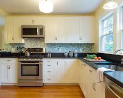 Wallpaper Backsplash Houzz - Wallpaper backsplash kitchen