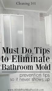 How To Prevent Black Mold In Bathroom Best 25 Cleaning Shower Mold Ideas On Pinterest Shower Mold