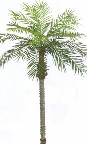 7 u0027 artificial phoenix palm x 2 tree plant pool patio christmas