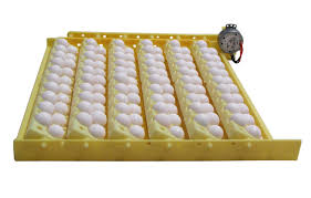 Used Cabinet Incubator For Sale Hovabator 1588 Genesis Egg Incubator Combo Kit Incubator Warehouse