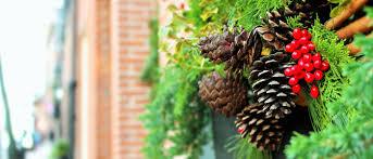 Home Decor Outlet Walden Artificial Christmas Trees Lights U0026 Home Decor Christmas Central