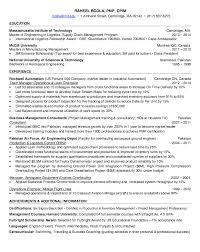 lean champion resume sample http resumesdesign com lean