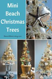 best 25 beach style christmas trees ideas on pinterest beach