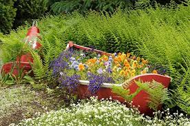 Diy Garden Bed Ideas 5 Creative Ideas For Raised Garden Beds Birds And Blooms