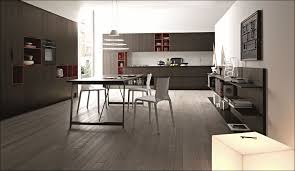 Building Frameless Kitchen Cabinets Frameless Cabinets Brown Coating Wooden Hickory Ideas Building