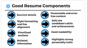 Succinct Resume How To Build A Good Resume For Mba Summer Internship
