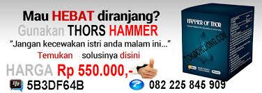 agen obat hammer of thor asli di kalimantan selatan 082225845909