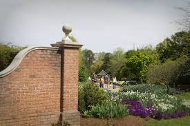 Raleigh Botanical Garden Growing With Plants Orchids And More Delight Visitors At The