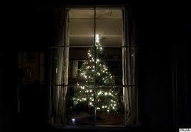window tree with lights lights decoration