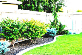 big front yard design cheap landscaping ideas for large backyards