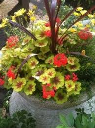 3310 best garden containers images on pinterest gardening pots