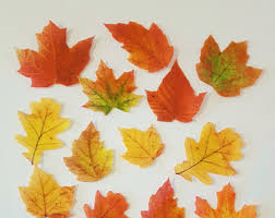 Fall Cake Decorations 64 Small Edible Fall Leaves Cupcake Topper Color On Both