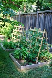 Lowes Trellis Panel Best 25 Lowes Trellis Ideas On Pinterest Small Vegetable