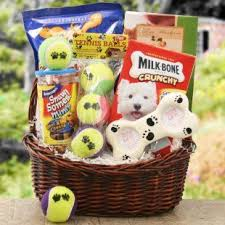 per gift basket 21 best pet gifts images on pet gifts easter baskets