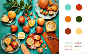color cheme top tips tools for choosing your brand color scheme