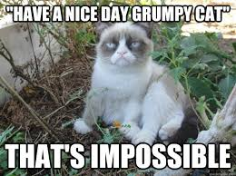 Have A Nice Day Meme - have a nice day grumpy cat thats impossible grumpy cat cats