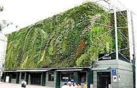 vertical gardens diy vertical gardens eco brooklyn