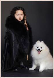 Games Thrones Halloween Costumes Toddler Halloween Costumes 2017
