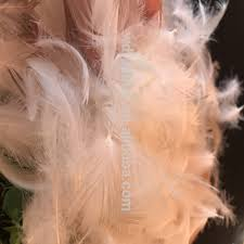 burlesque feather fans feather fans cheap feather fans cheap suppliers and manufacturers