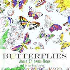 coloring book butterflies two hoots coloring