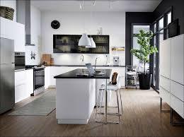 Upper Kitchen Cabinet Dimensions 100 Ikea Upper Kitchen Cabinets Kitchen Upper Cabinet
